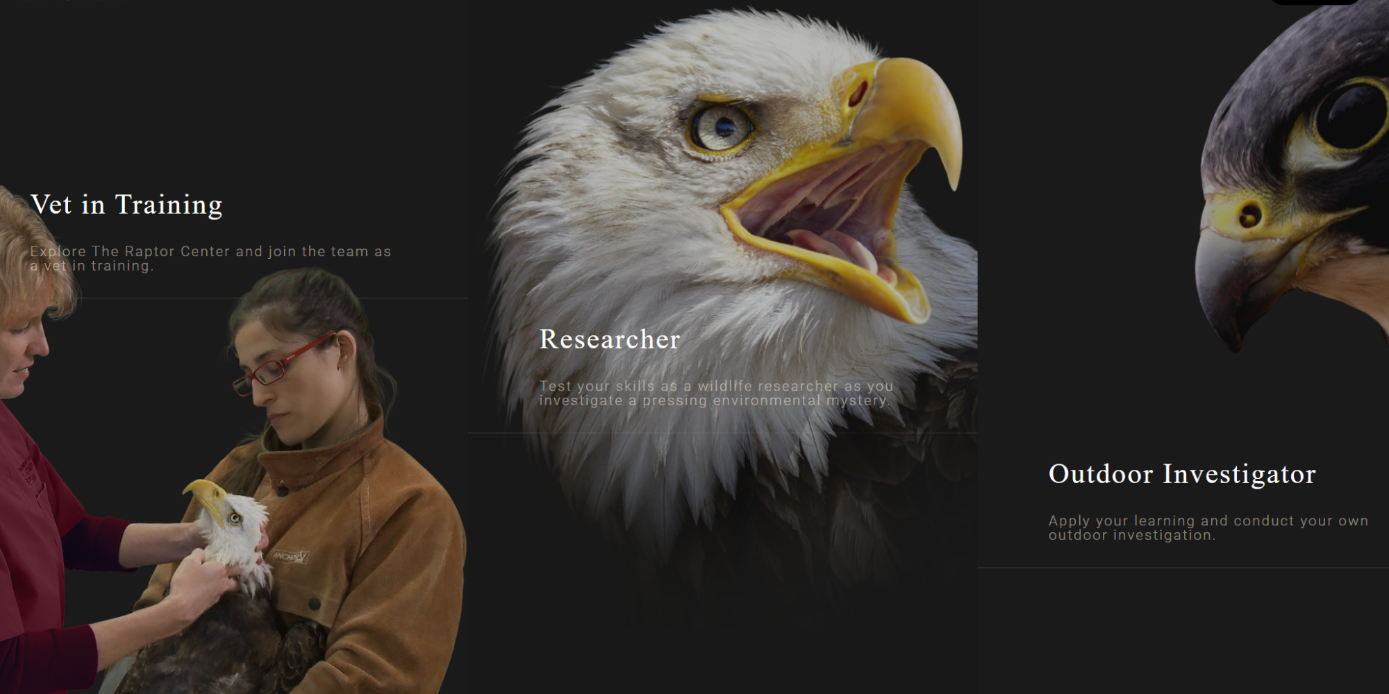 Preview of the Raptor Lab website
