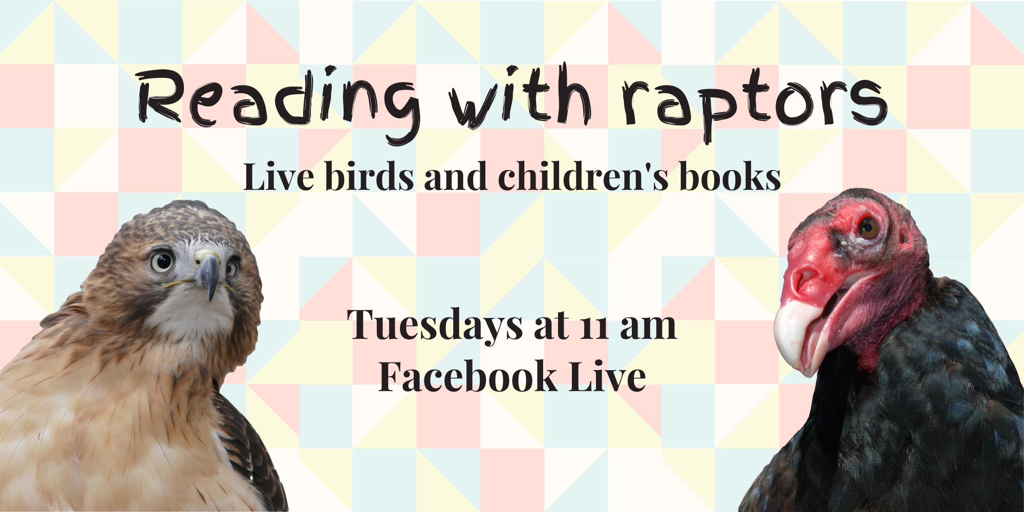 Facebook live event Tuesdays at 11